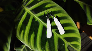 Black-billed Gull Feather Earrings