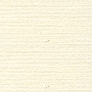 Rasant 0875 Cream 1000m ( Colour may vary on your computer)