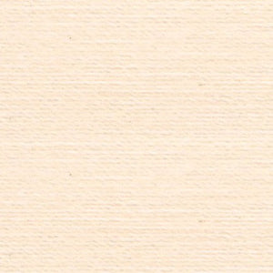 Rasant 5099 Light Peach Cream 1000m ( Colour may vary on your computer)