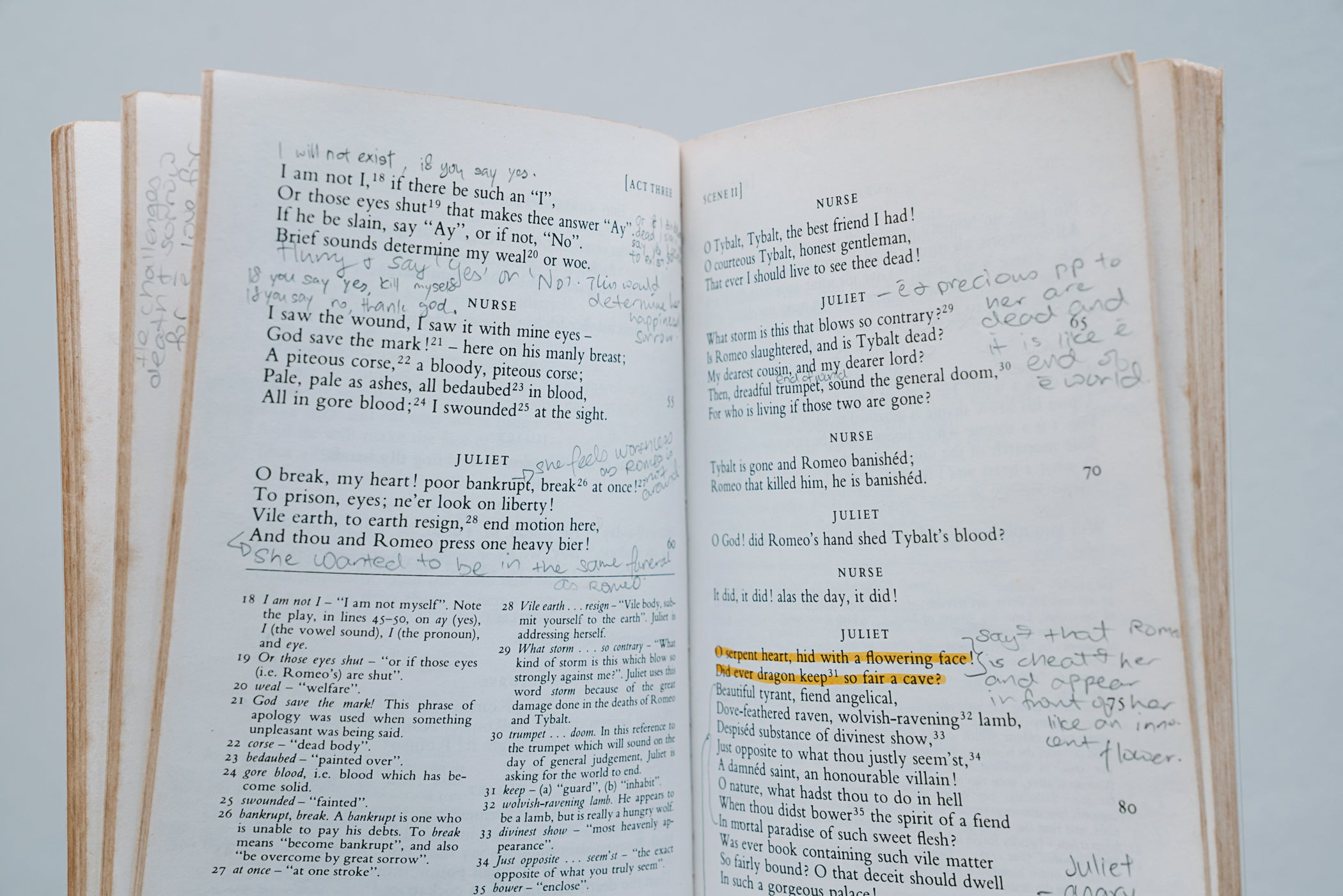 Pages of book in Well Read condition