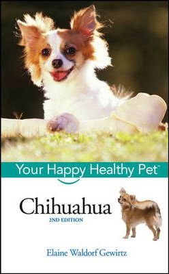 Chihuahua - Your Happy Healthy Pet