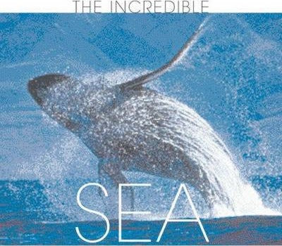 The Incredible Sea