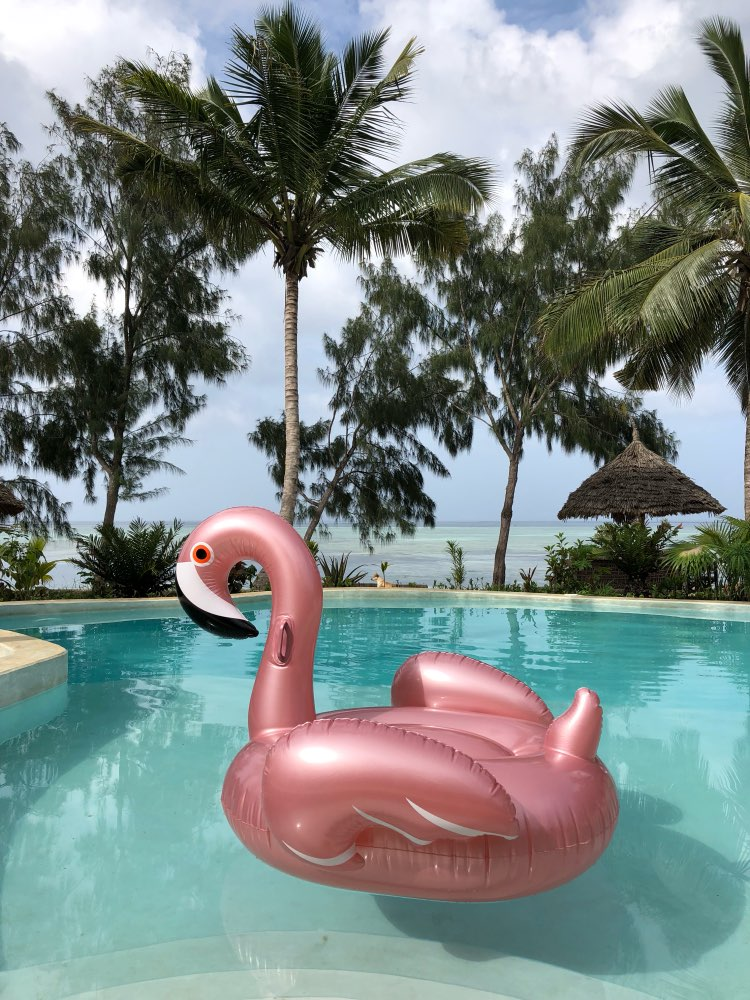 Flamingo Inflatable Swimming Float