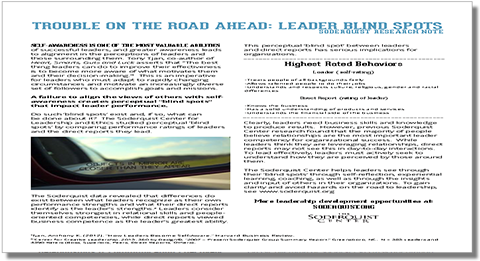 Trouble On the Road Ahead: Leader Blind Spots
