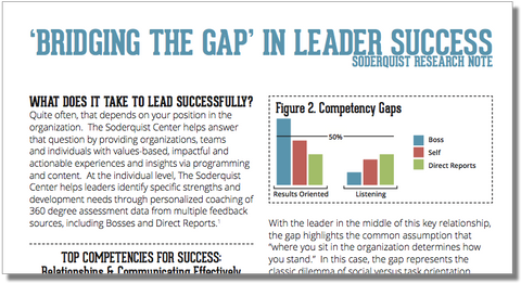 'Bridging the Gap' in Leader Success