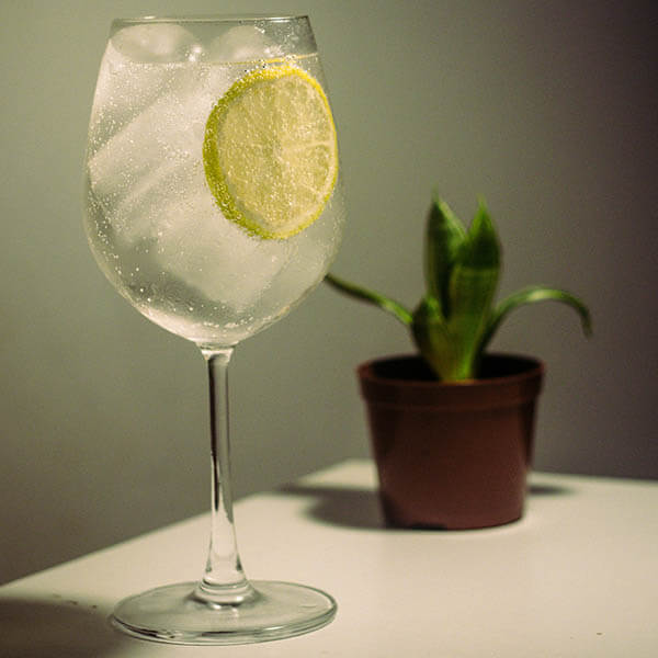 Gin and Tonic Cocktail Recipe - SanSwee