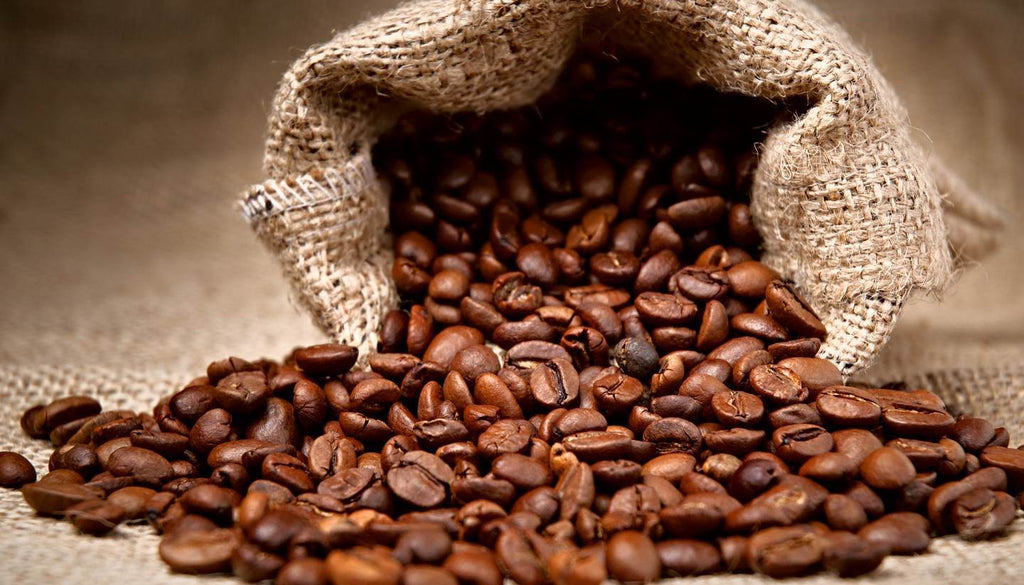 insects in food facts - fecal matter in coffee beans