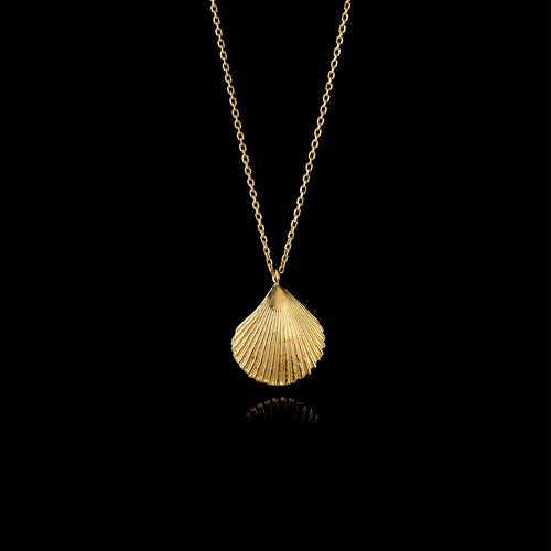 Gold Mussel Shell and Pearl Pendant