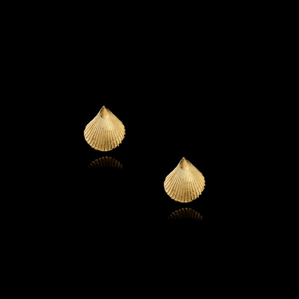 Gold Shell Stud Earrings