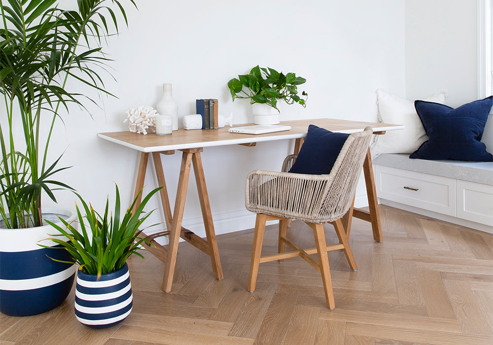 Benefits of Indoor Plants for your home