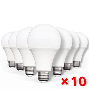 LOT de 10 AMPOULES LED E27
