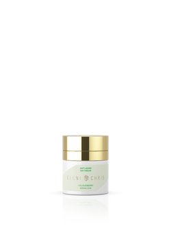 Anti Aging Day Cream Normal Skin