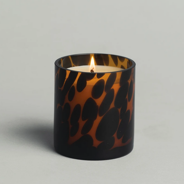 Red Currant Candle, Timeless Tortoise
