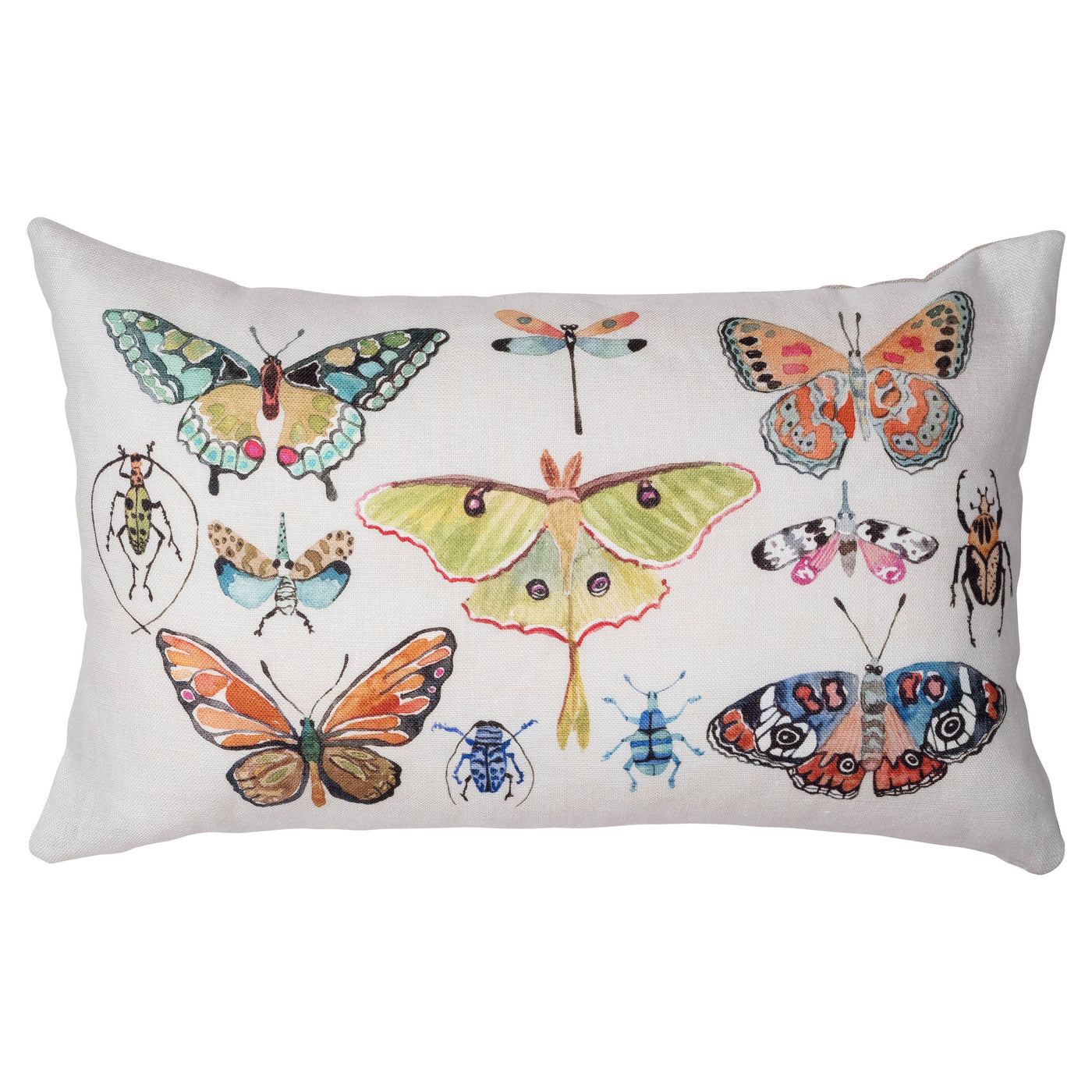 Insect Pillow With Pink Velvet Back
