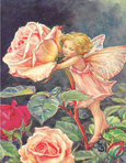 Flower Fairy Mini Puzzles