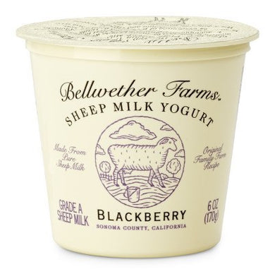 Bellwether farms sheep milk yogurt blackberry 6oz