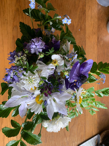 A bouquet of blue and white flowers of varying types with vivid green leaves at the edges.