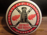 Detroit Red Wings 2002 Stanley Cup Champions Magnet