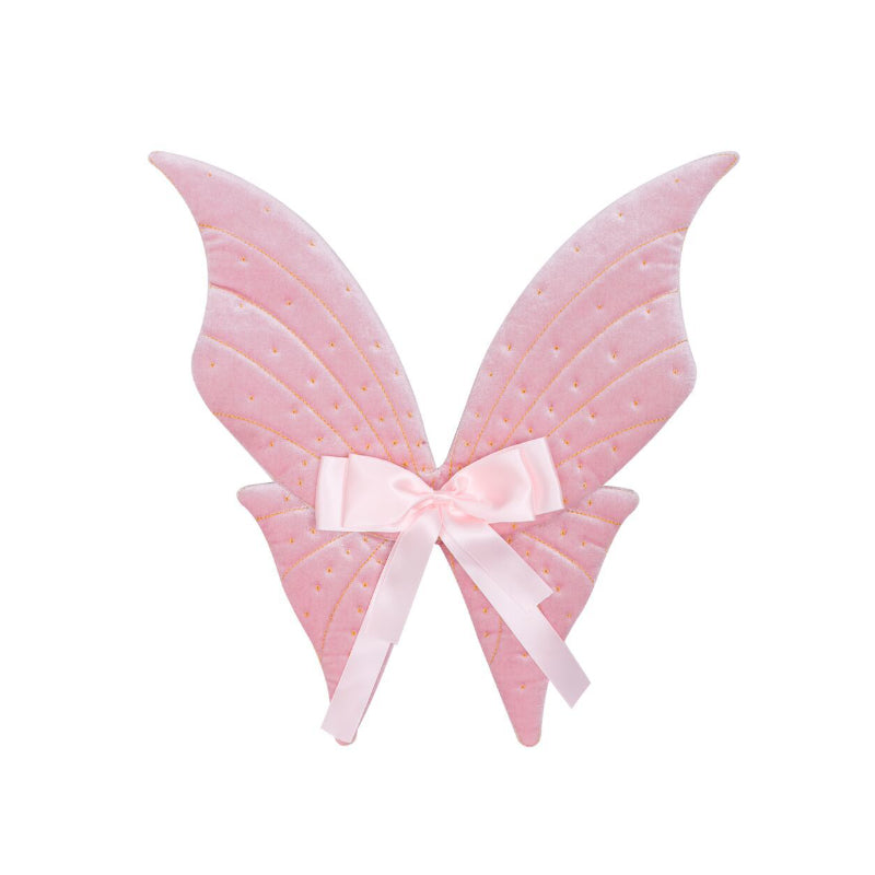 Billy Loves Audrey Magical Velvet Wings in Pink