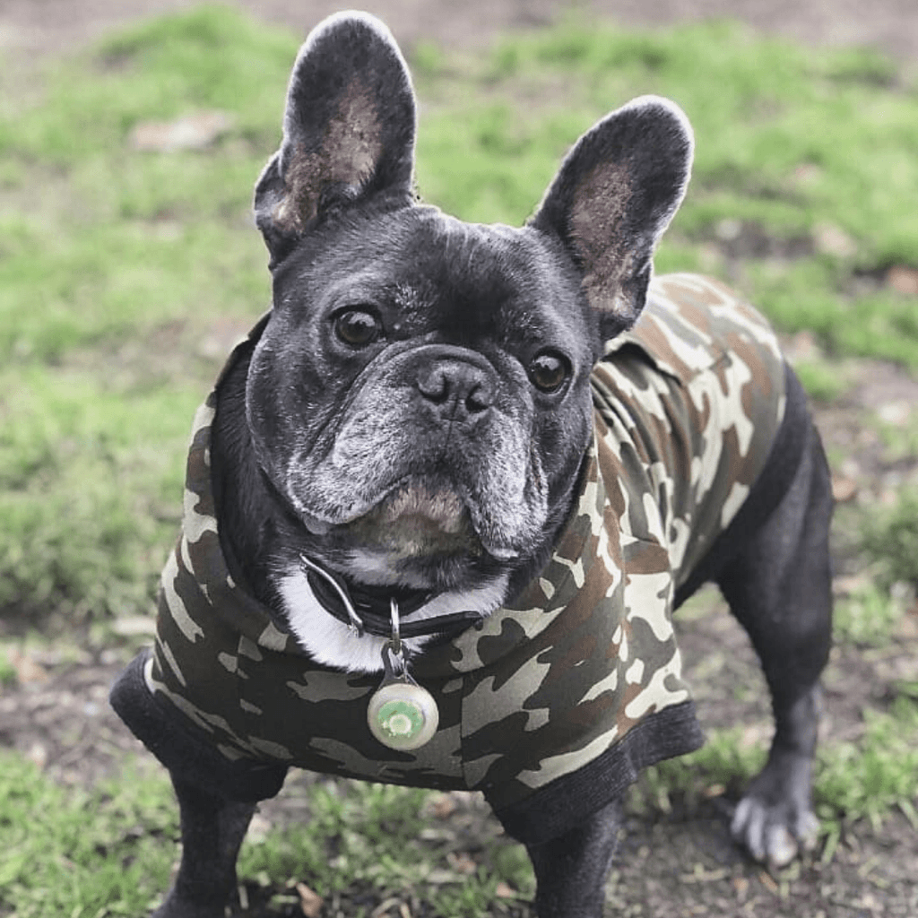 Bamboo Dog Hoodie | Camo | The Sharper Barker - SnuggleDogz