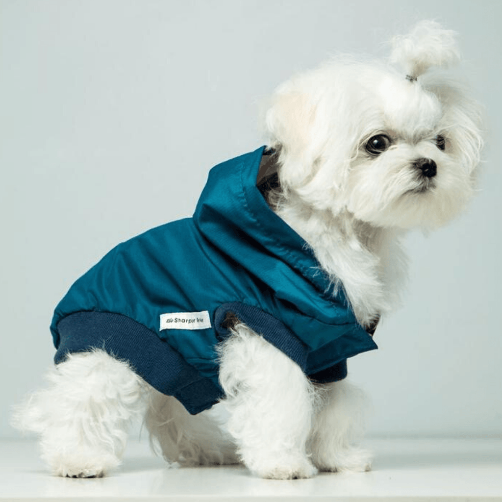 Bamboo Teal Dog Rain Jacket | Pink Stripe | The Sharper Barker - SnuggleDogz