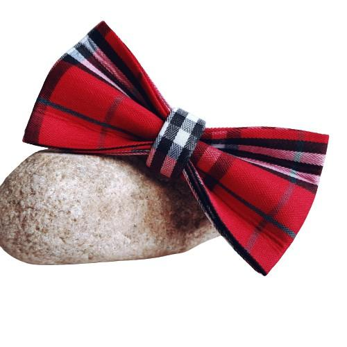 Dog Bow Tie Red Check | Bold - SnuggleDogz