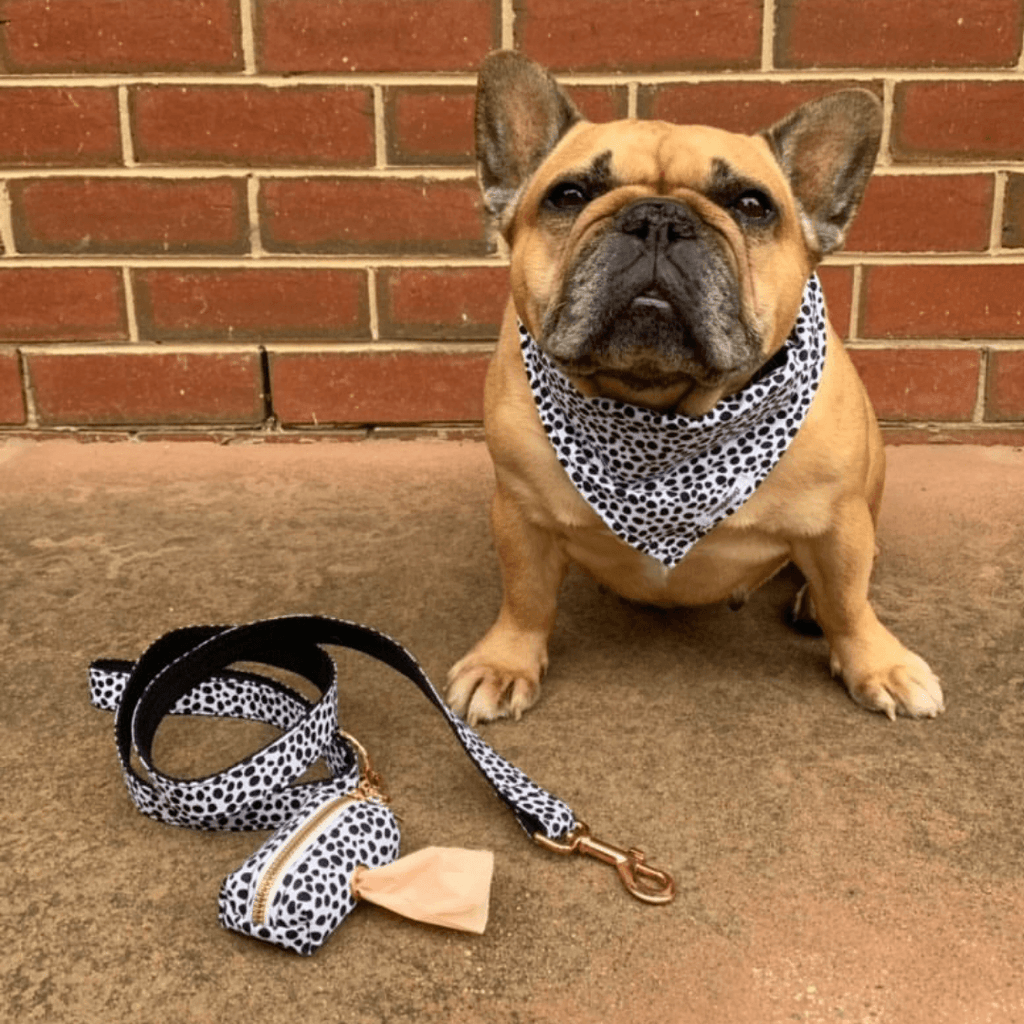 Dog Harness Black Spots | Chic - SnuggleDogz