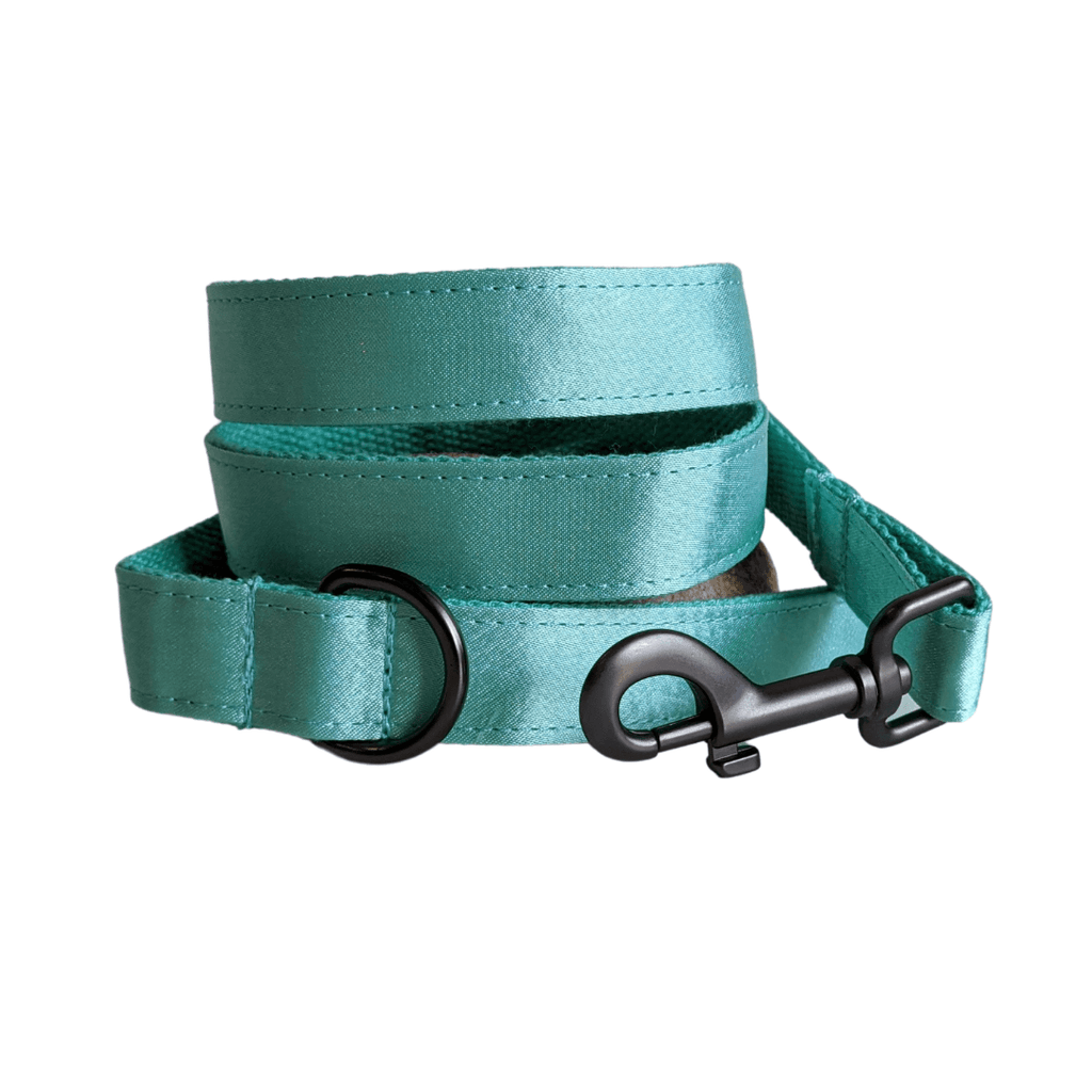 Dog Leash Mint Green | Glamorous S / Gunmetal - SnuggleDogz