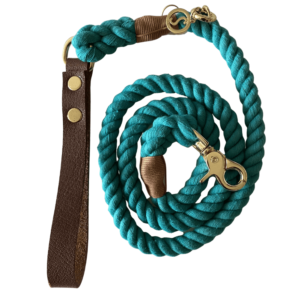 Rope Dog Leash Teal Green | Twisted 2.0 - SnuggleDogz