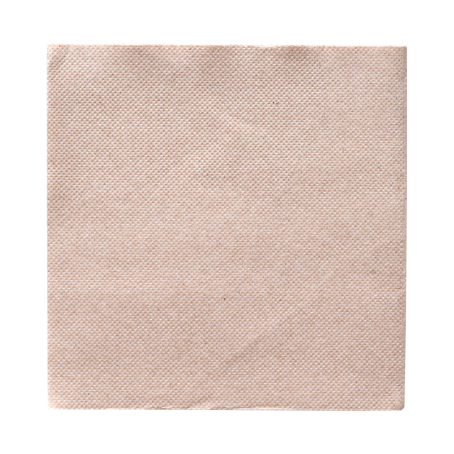 Napkin Lunch 1-ply
