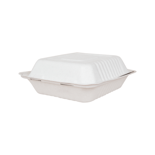 Bagasse Large Square Clam