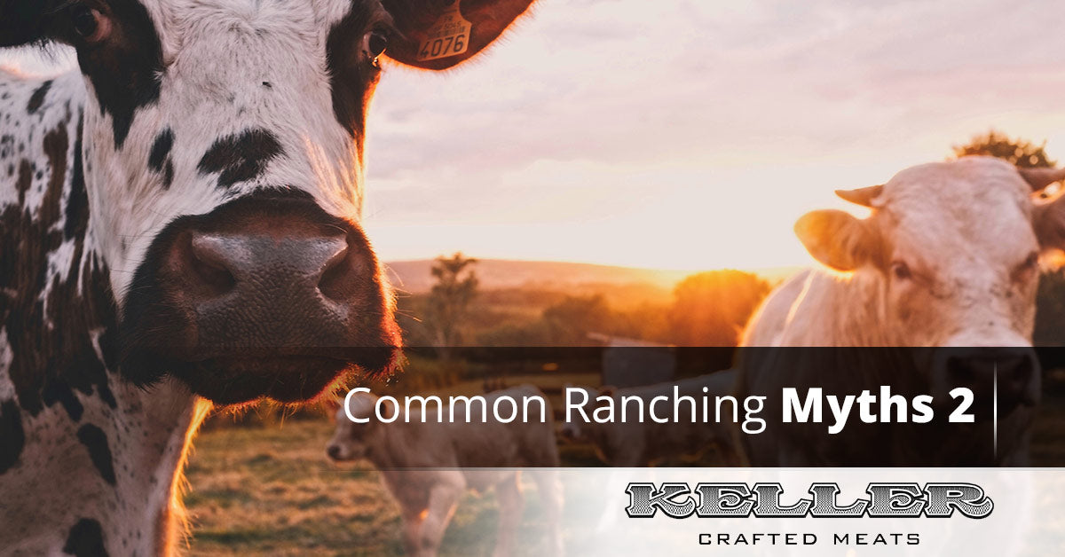Common Ranching Myths, Pt. 2