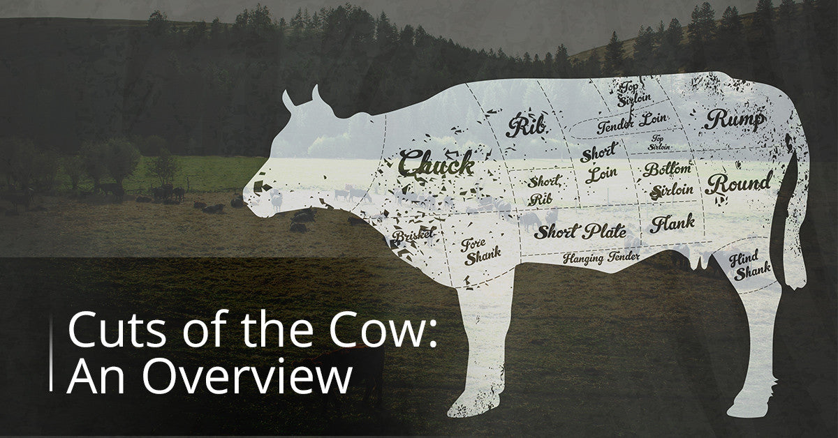 Cuts Of The Cow: An Overview