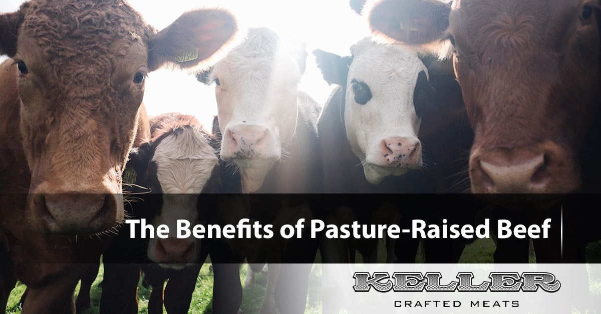 The Benefits of Pasture-Raised Beef
