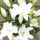 Classic Lily Funeral Bouquet