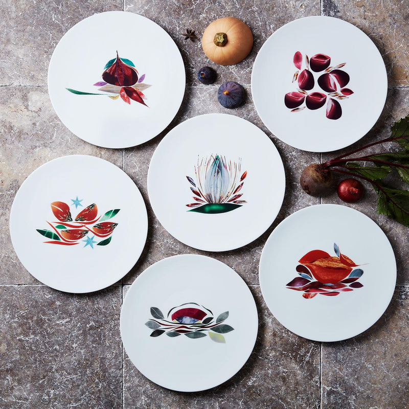 Collection d'assiettes à dîner en porcelaine de Limoges Dame Nature, l'art de la table français