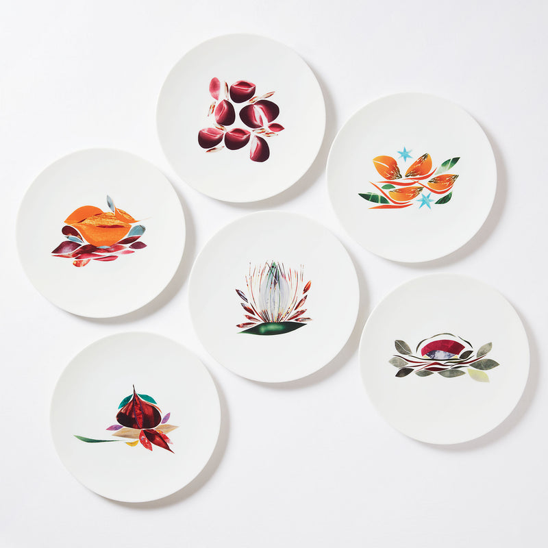 Collection d'assiettes à dîner en porcelaine de Limoges Maison Fragile Dame Nature par Alain Passard