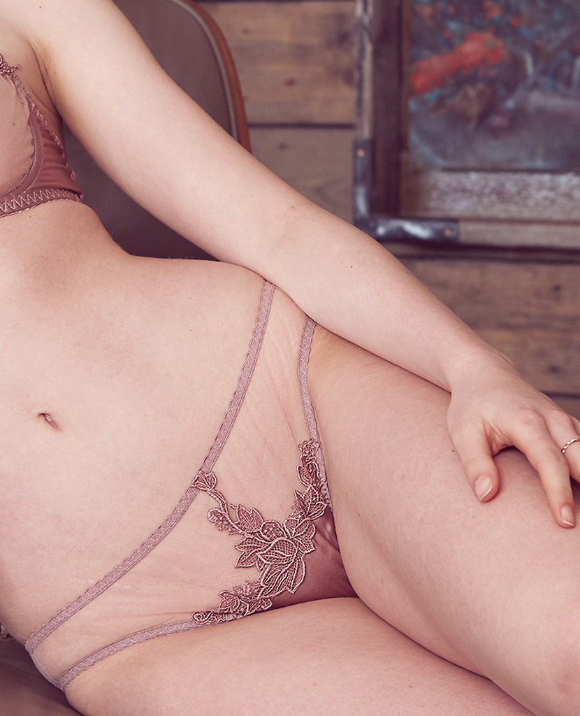 Desert Rose Silk and Guipure Brief