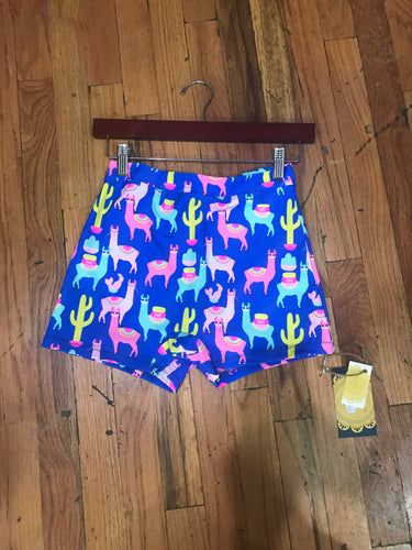 *LIMITED EDITION* Llama Yoga Shorts