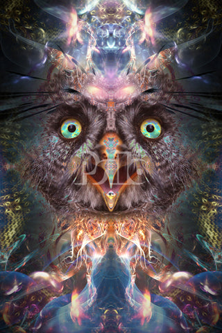 """""""Complete Awareness"""" Psychedelic Acid Owl Art, Tripping, Trippy, Fractal"""