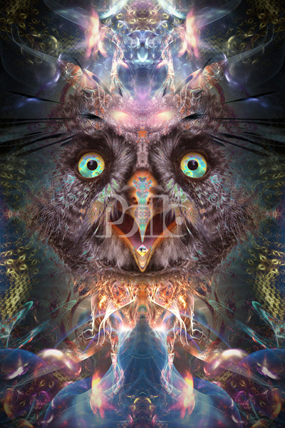 """""""Complete Awareness"""" Psychedelic Trippy Owl Art, Tripping, Mushrooms Acid Art"""