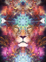 Psychedelic Lion Visionary Art