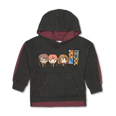 Harry Potter Hogwarts Toddler Boy's Hoodie Sweatshirt, Charcoal Heather