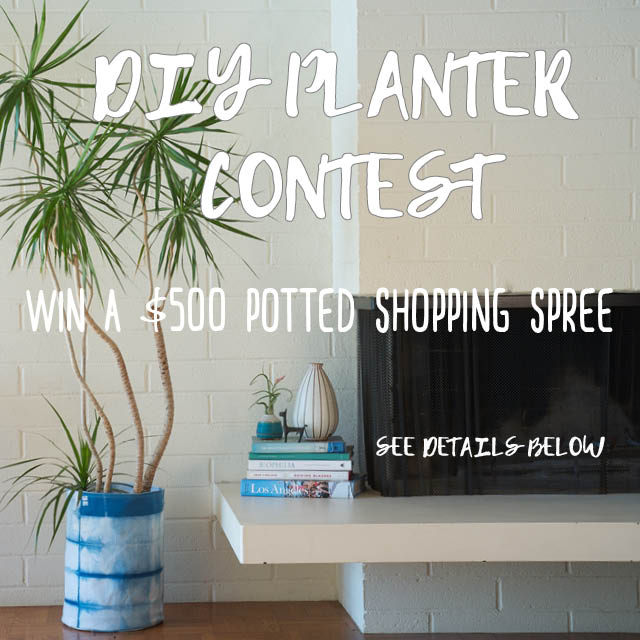 Potted Style DIY Contest