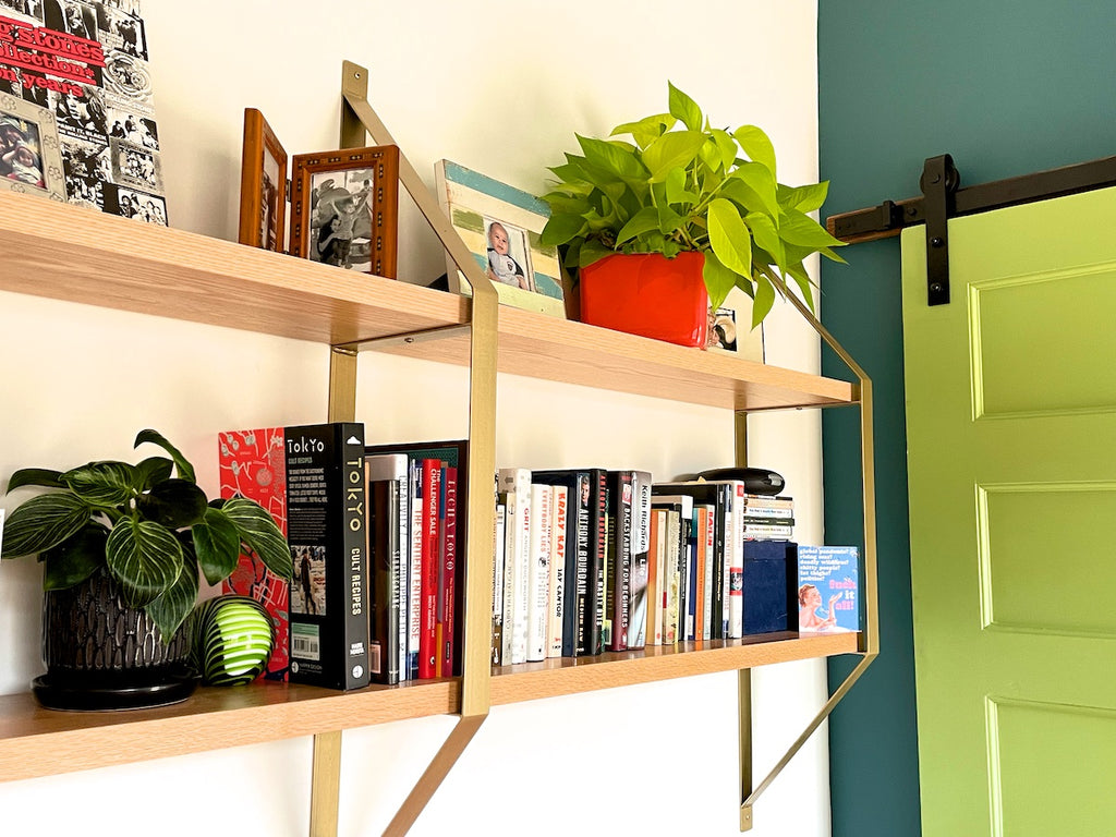 Plants on a wooden shelf in a home office.