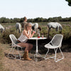 Woman drinking a drink while seated on a Sixties dining chair with horses in a pasture behind her.
