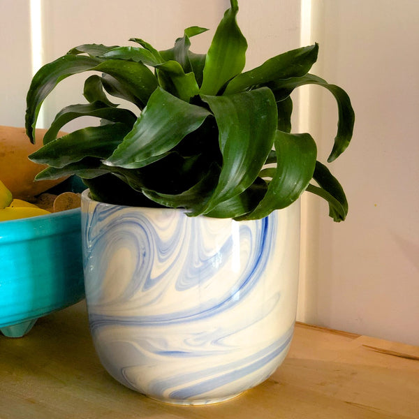 Blue swirl cache pot with a houseplant.
