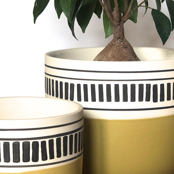 Closer image of Graphic planter for houseplants with chartreuse bottom and black line detail at top.