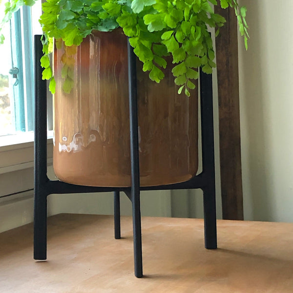 Brown pot in a black iron plant stand with a maiden hair fern.