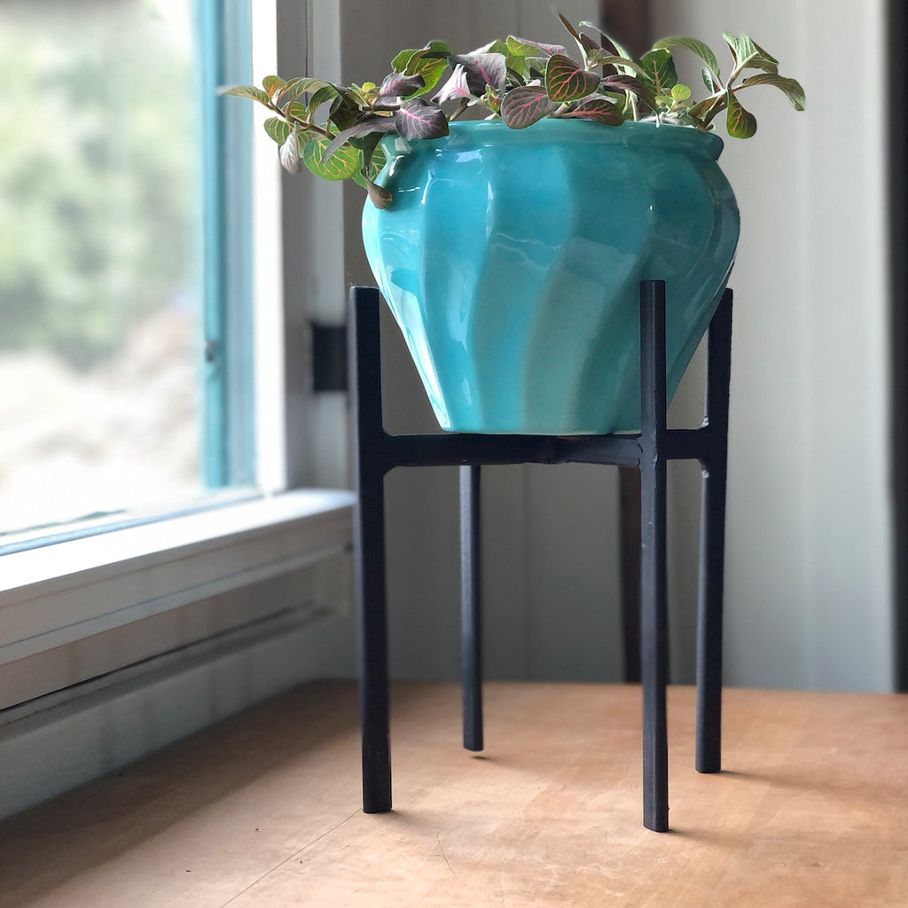 Aqua Vintage Bauer  pot in a black iron plant stand with a maiden hair fern.